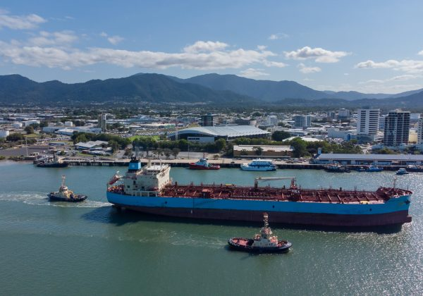 New additions to Cairns – welcome Wajarri and Tarcoola